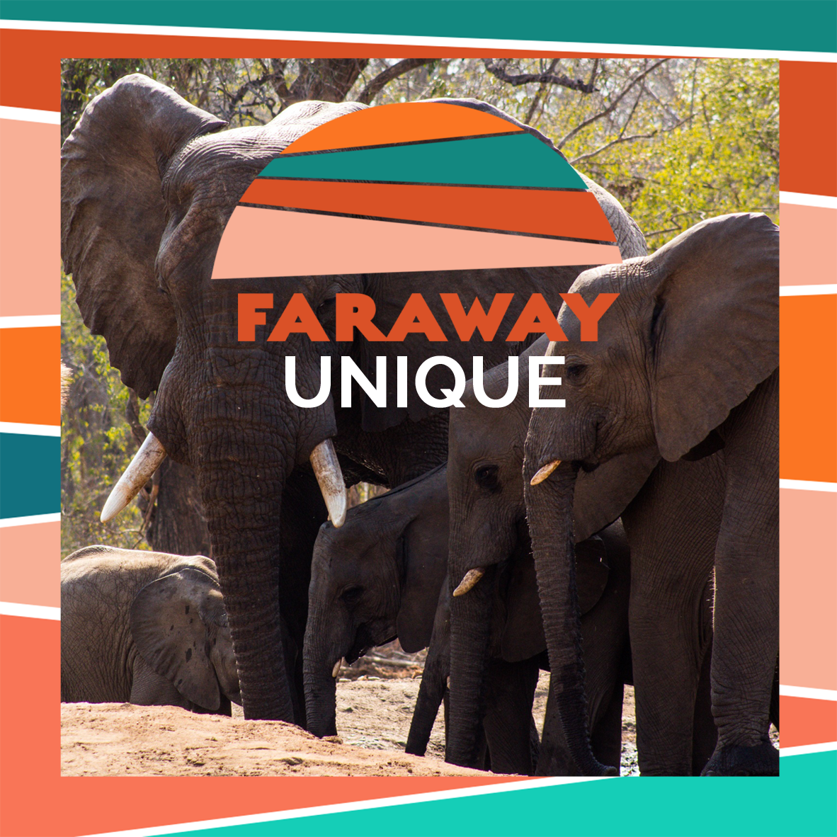 Faraway Unique trips - from celebrations to sabbaticals; our bespoke trips are tailored to what you love