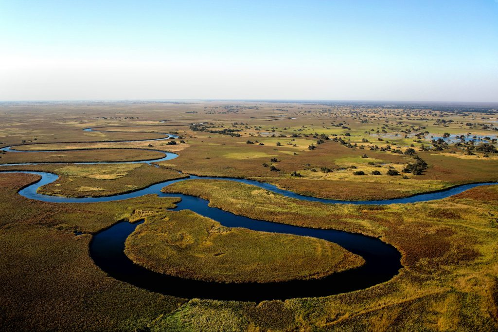 Safari in the Okavango Delta in Botswana