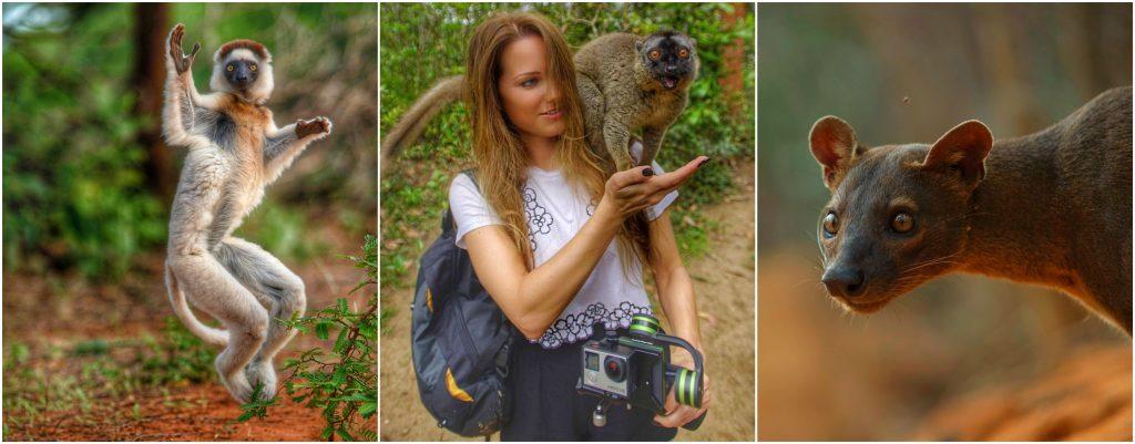 Catherine Capon Madagascar lemurs fossa