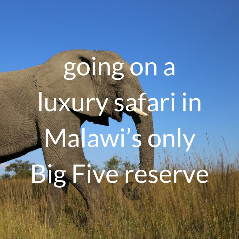 Big 5 safari at Mkulumadzi in Majete National Park, Malawi