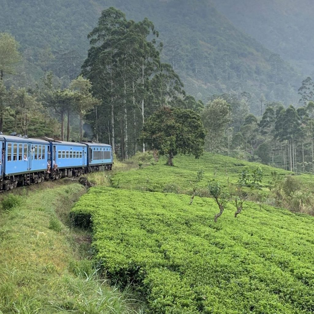 Taking a train from Kandy to Nuwara Eliya through mountains and tea plantations