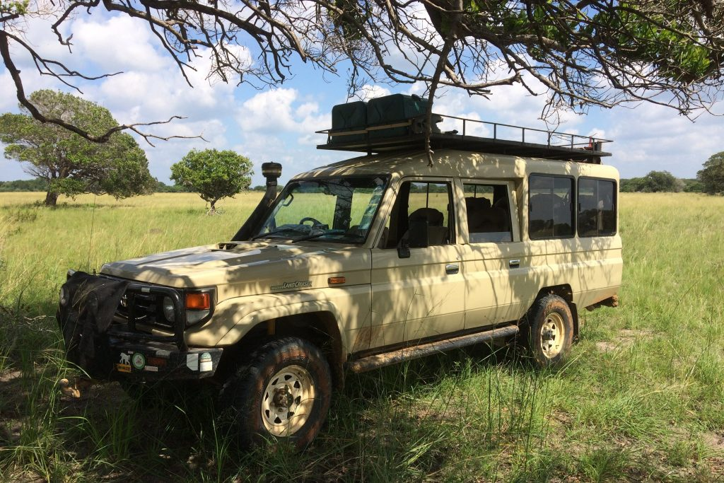 A 4x4 safari experience through the Maputo Special Reserve in Mozambqiue
