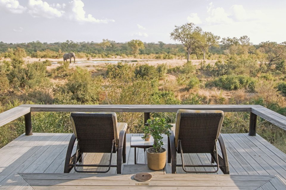 Simbambili Game Lodge Sabi Sands